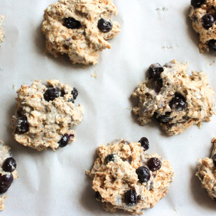 Hashtag Vegan | Easy Vegan Blueberry Scones
